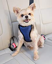 PetSafe Happy Ride Certified, Crash-Tested, Comfortable, Durable, Dog Safety Harness, Small