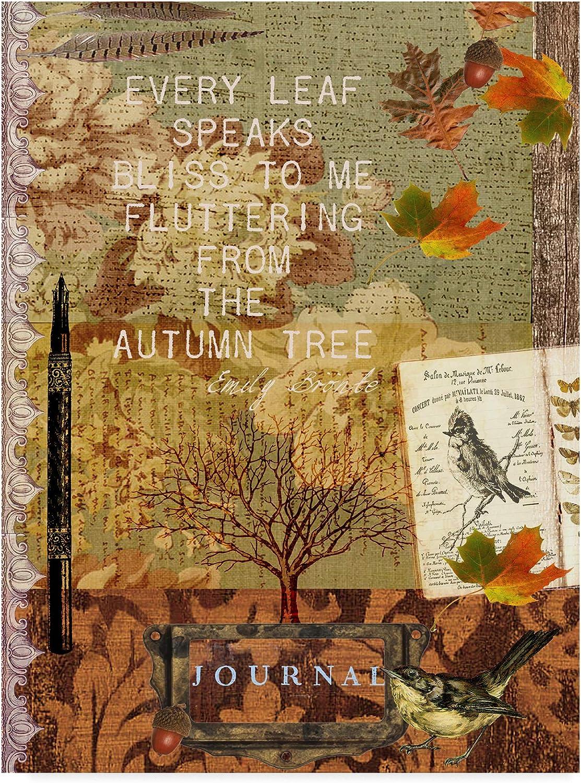 Trademark Fine Art Collected Autumn II by Sandy Lloyd, 14x19