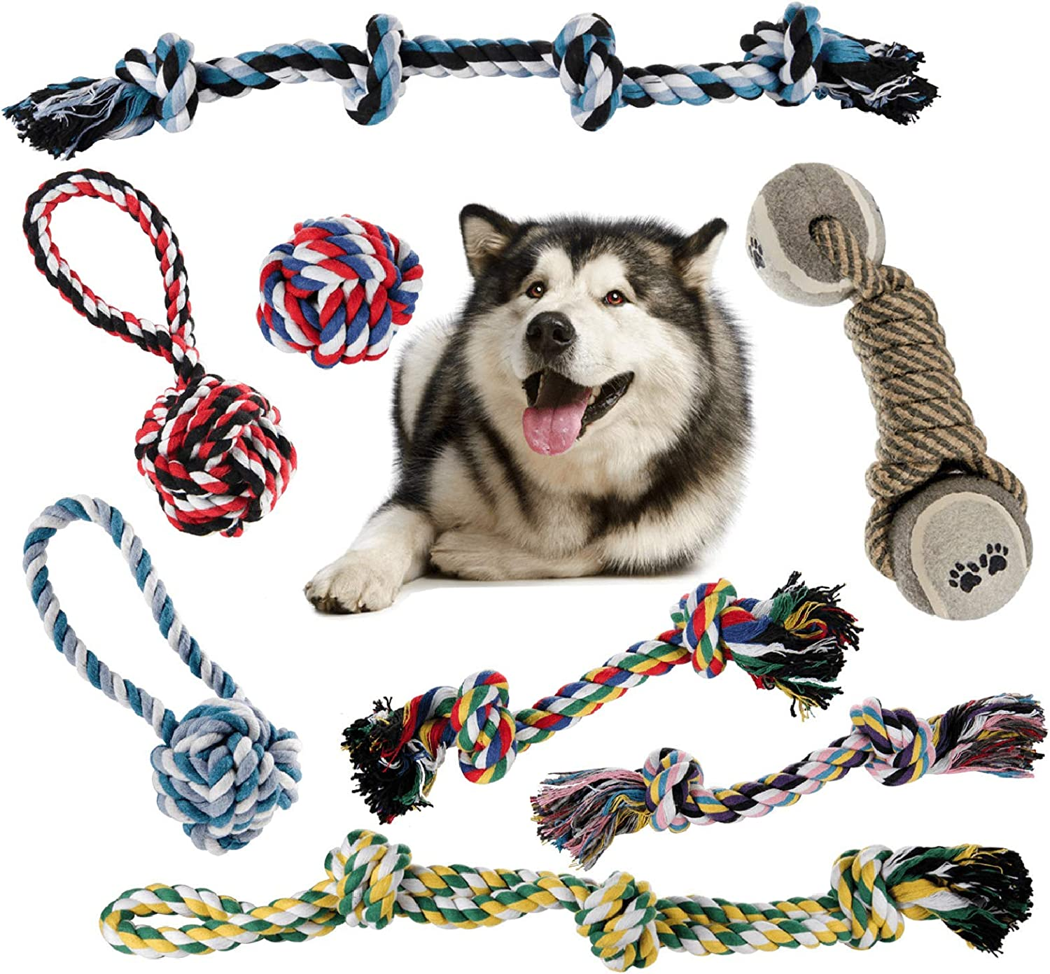 ZOUTOG Puppy Chew Toys Set of Reservation 8 for Ch Rope Dog gift Aggressive