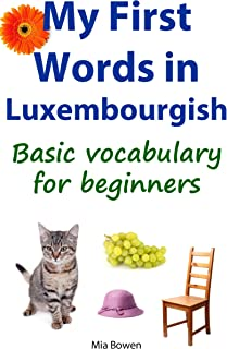 learn luxembourgish book