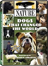 Best dogs by nature Reviews