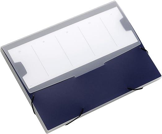 dunkelblau Durable 247307 Sammelbox Small beschriftbar F/üllverm/ögen 20 mm