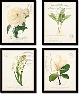 french botanical prints