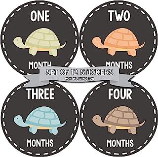 Months In Motion Gender Neutral Baby Month Stickers - Monthly Milestone Sticker for Boy or Girl - Onesie Month Sticker - S...