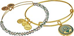 Art Infusion Claddagh II Bracelet Set