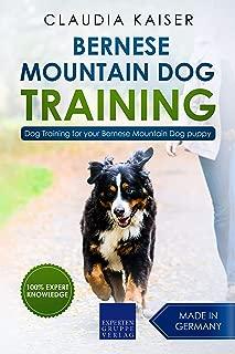 Bernese Mountain Dog Training: Dog Training for your Bernese Mountain puppy