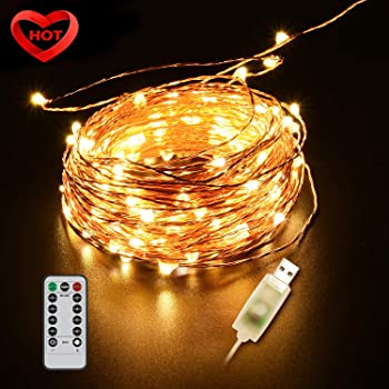 Ylife 33Ft 100 Waterproof LED Fairy Lights