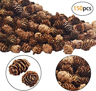 Best small craft pine cones Reviews
