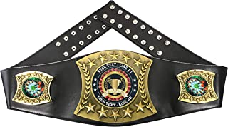 Express Medals Custom Darts Trophy Personalized Champion Belt MY418