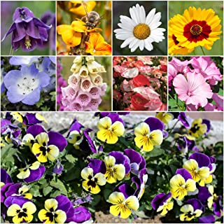 Bulk Package of 30,000 Seeds, Moist Area Wildflower Mixture (100% Pure Live Seed) Non-GMO Seeds by Seed Needs …