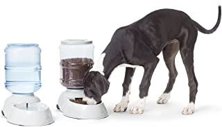 AmazonBasics Large Gravity Pet Food Feeder and Water Dispenser Bundle