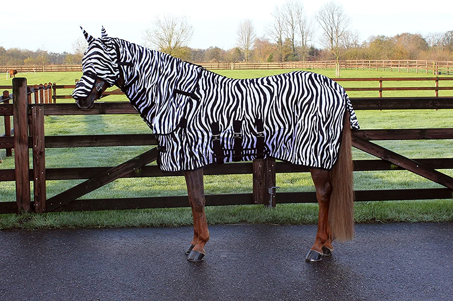 QHP Fly Turnout Rug and Fly Mask Zebra