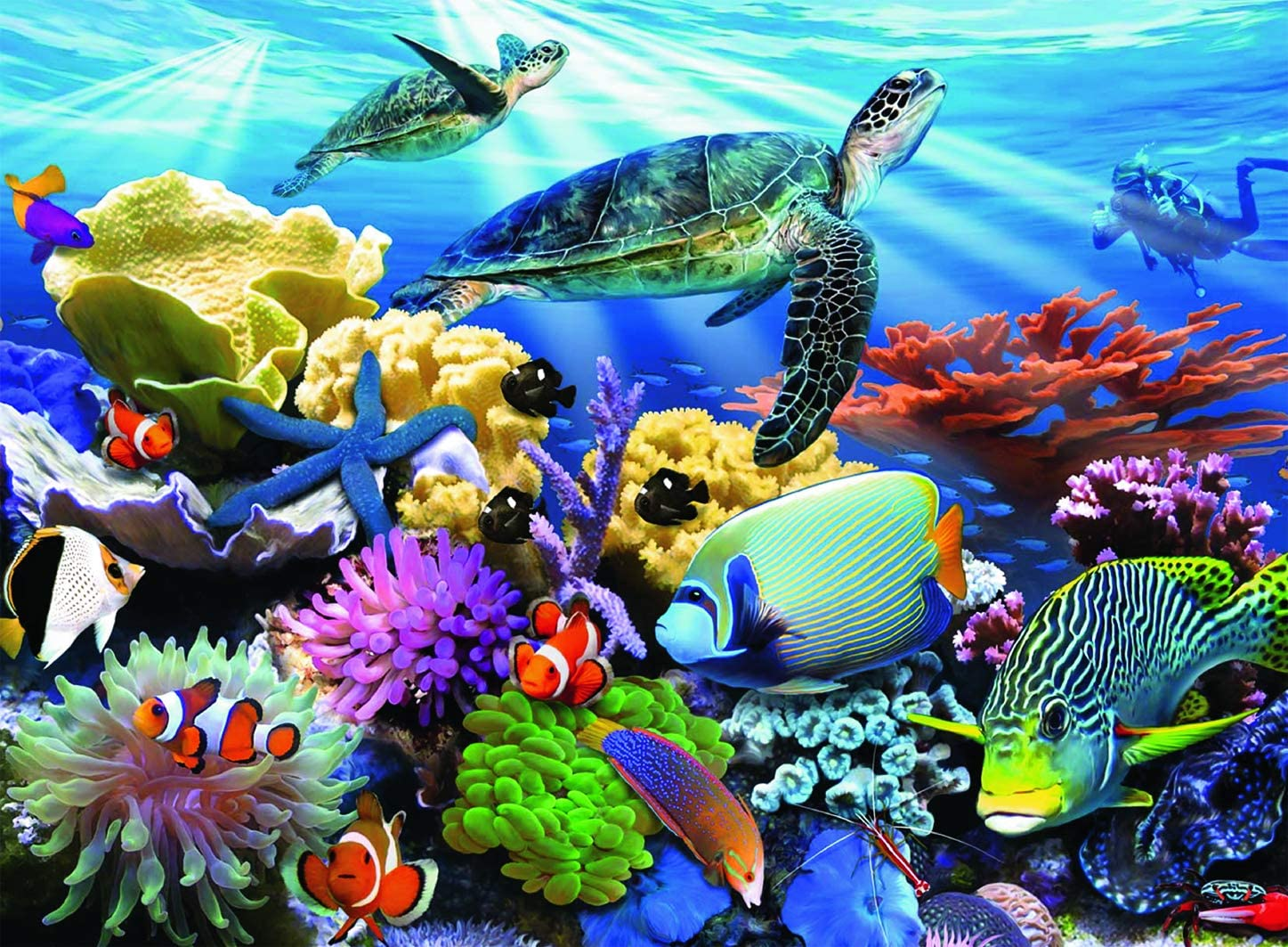 Ravensburger Ocean Turtles - 200 Piece Jigsaw Puzzle for Kids – Every Piece is Unique, Pieces Fit Together Perfectly : Everything Else