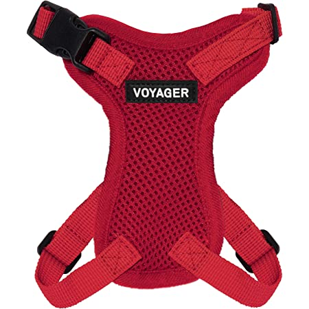 Black Voyager Step-In Lock Dog Harness Adjustable Step-In Vest Harness for Small and Large Dogs Best Pet Supplies Inc Small