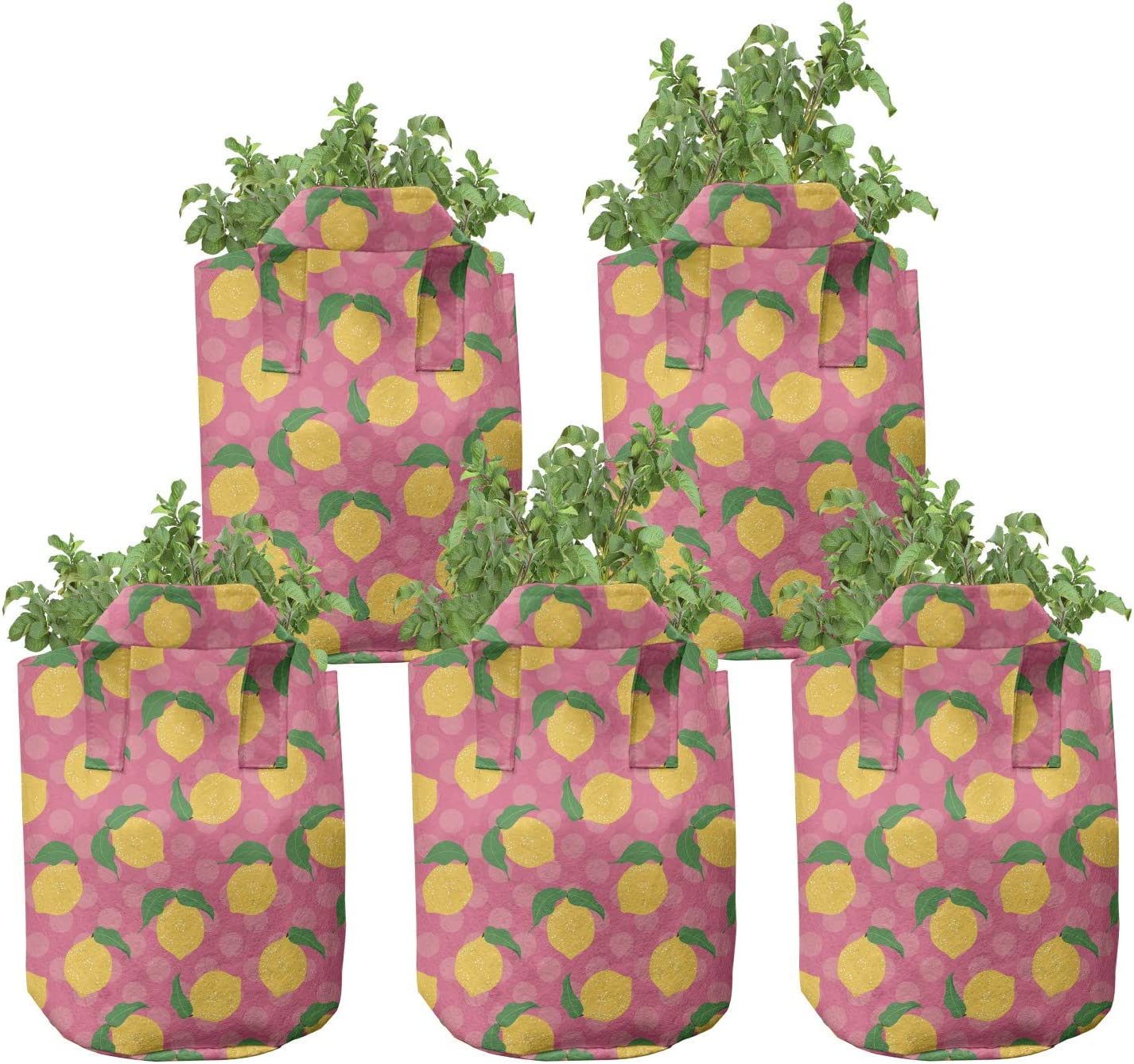 Ambesonne Lemon Grow Bags Max 57% OFF 5-Pack Dots online shop Lemons Polka with Leaves
