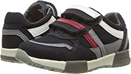 Geox Kids - Alfier 2 (Toddler/Little Kid)
