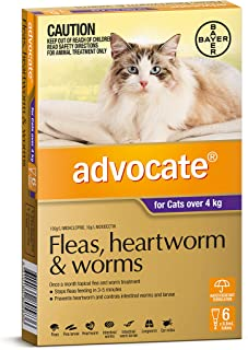 Advocate for Cats over 4kg, 6 Pack