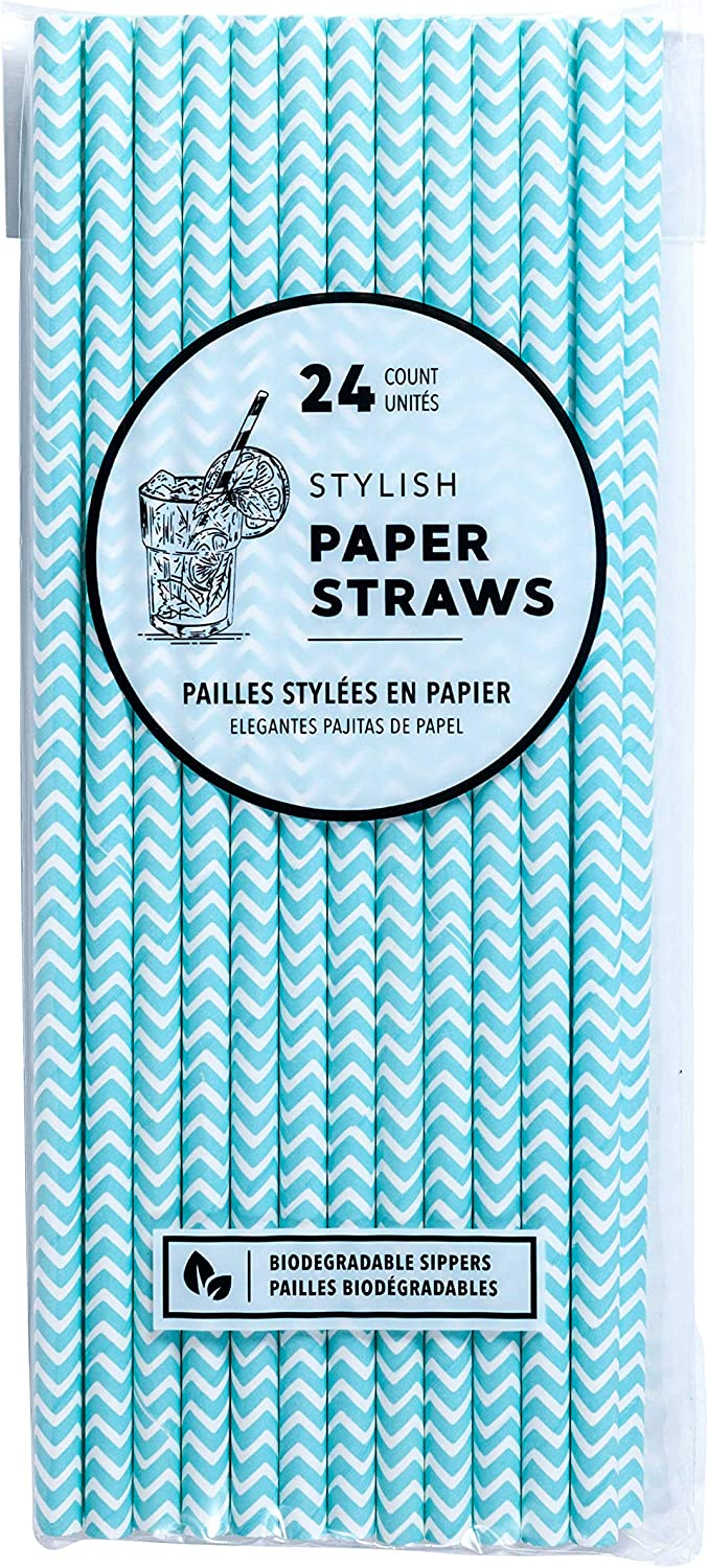 Jacent Stylish 2021 autumn and winter new Biodegradable Paper Award-winning store Straws Count 24 per Package