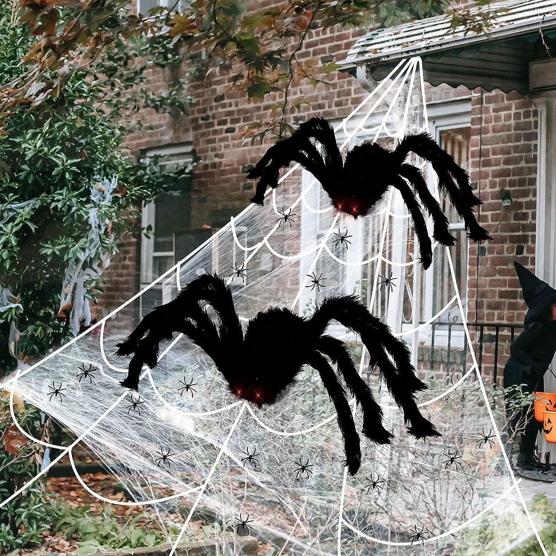万圣节蜘蛛网#23