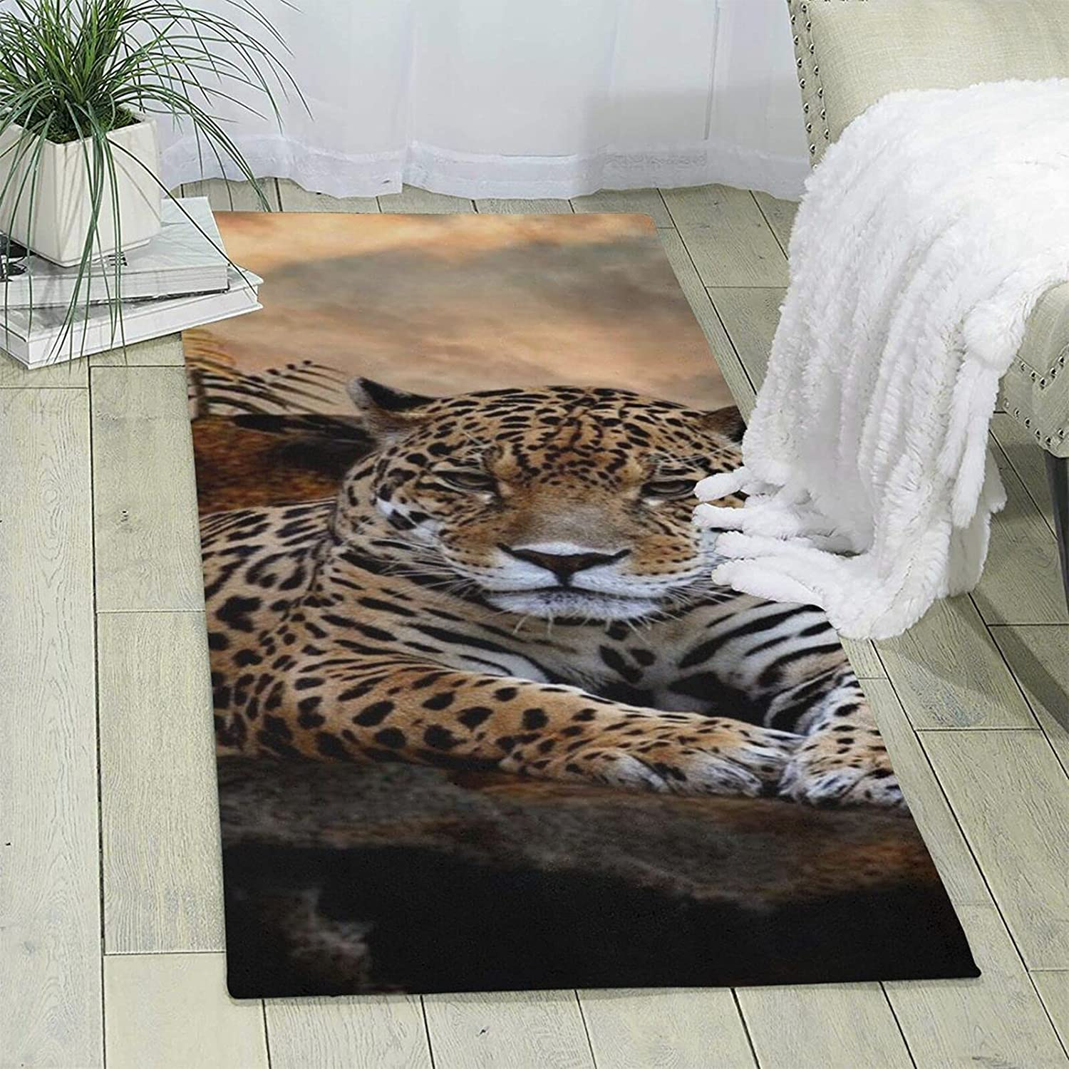 Cool Tiger Single-Sided Print Max 90% OFF Area Ultra Rug Non- Soft Max 52% OFF
