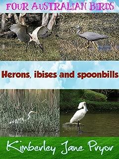ibis water