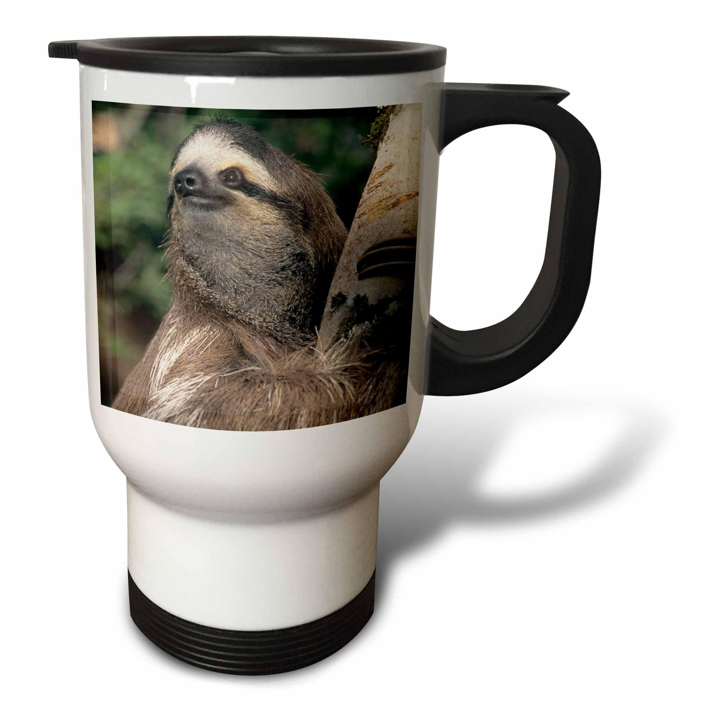 3dRose Three-Toed Sloth Wildlife-Corcovado Np-Costa Rica, Stainless Steel Travel Mug, 14-Oz