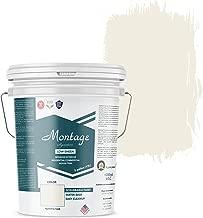 Best exterior wall paint Reviews