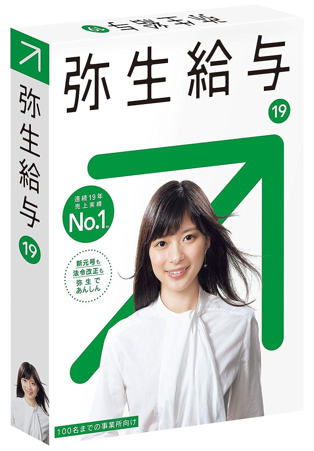 準備ができてリーンシンボル【旧商品】弥生給与 19 通常版
