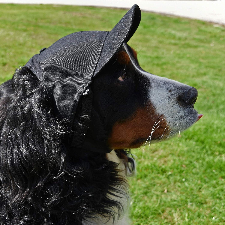 Littlearth NCAA Unisex NCAA Pet Baseball Hat