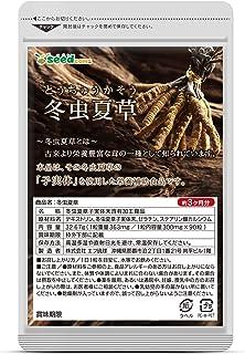 シードコムス 冬虫夏草 サプリメント 約3ヶ月分 90粒