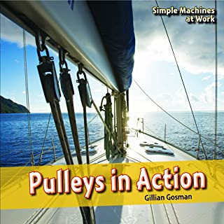 Pulleys in Action