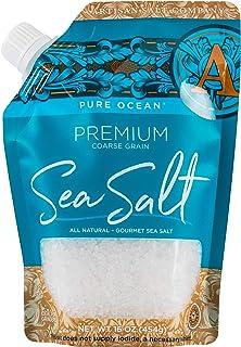 SaltWorks Pure Ocean Premium Sea Salt, Coarse, Artisan Pour Spout Pouch, 16 Ounce