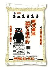 【精米】熊本県産 白米 森のくまさん 5kg 令和元年産