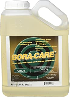 boracare mold care label