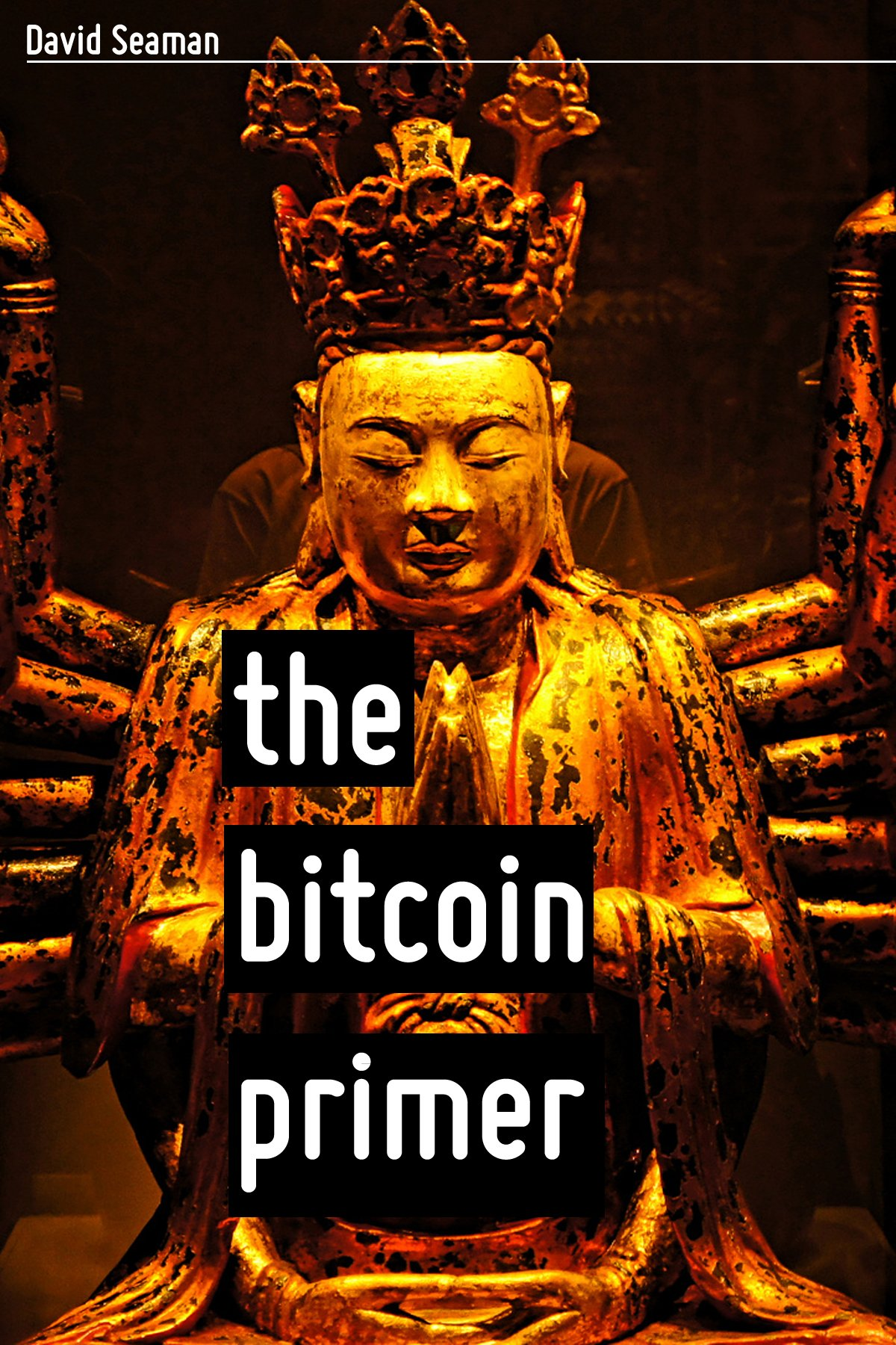 The Bitcoin Primer: Risks, Opportunities, And Possibilities