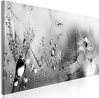 Leinwand 1 Tlg schwarz weiß Kürbis Pflanze Garten Bilder Wand aufgespannt 9C369