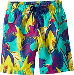 Birds of Paradise Swim Trunk (Toddler/Little Kids/Big Kids)