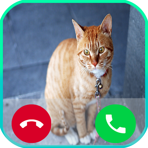 fake call from cat poupii