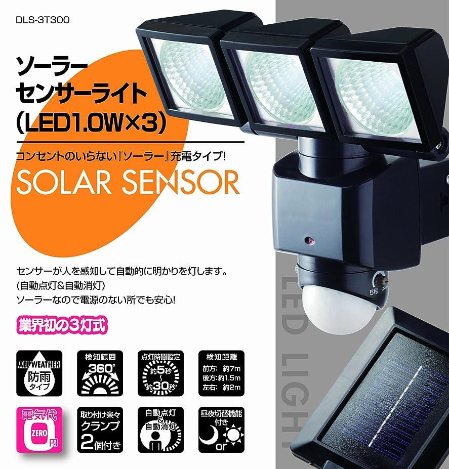 悪いリンス粒ソーラーセンサーライト(LED1.0W×3)DLS-3T300