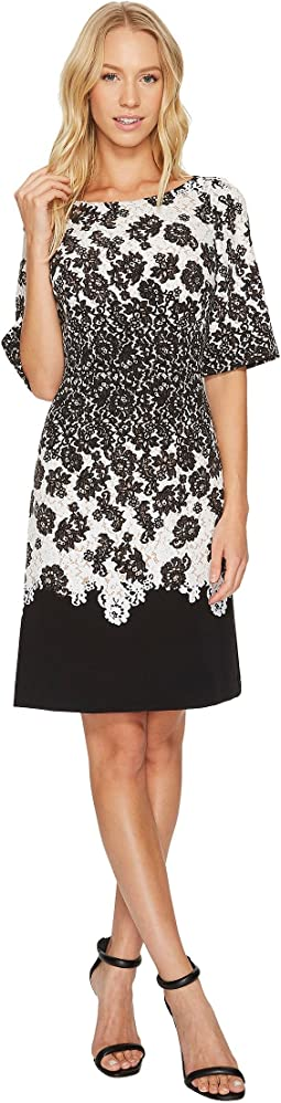 Adrianna Papell - Fluttering Lace Print Fit & Flare with Elbow Length Sleeves