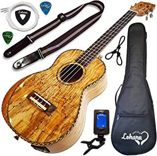 Ukulele From Lohanu Amazing Looking Spalted Maple With Armrest Glossy Finish With 3 Band EQ & Pickup With All Accessories Included! (Tenor Size)