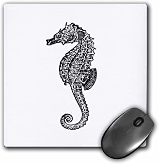 3dRose Seahorse vintage black and white, Ocean aquarium Sea horse - Mouse Pad, 8 by 8 inches (mp_164955_1)