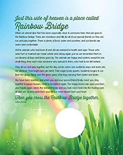 Soapbox Studio Rainbow Bridge Keepsake, Pet Sympathy Print with Photo Opening for Dog, Cat, Horse or Any Pet Loss, 8