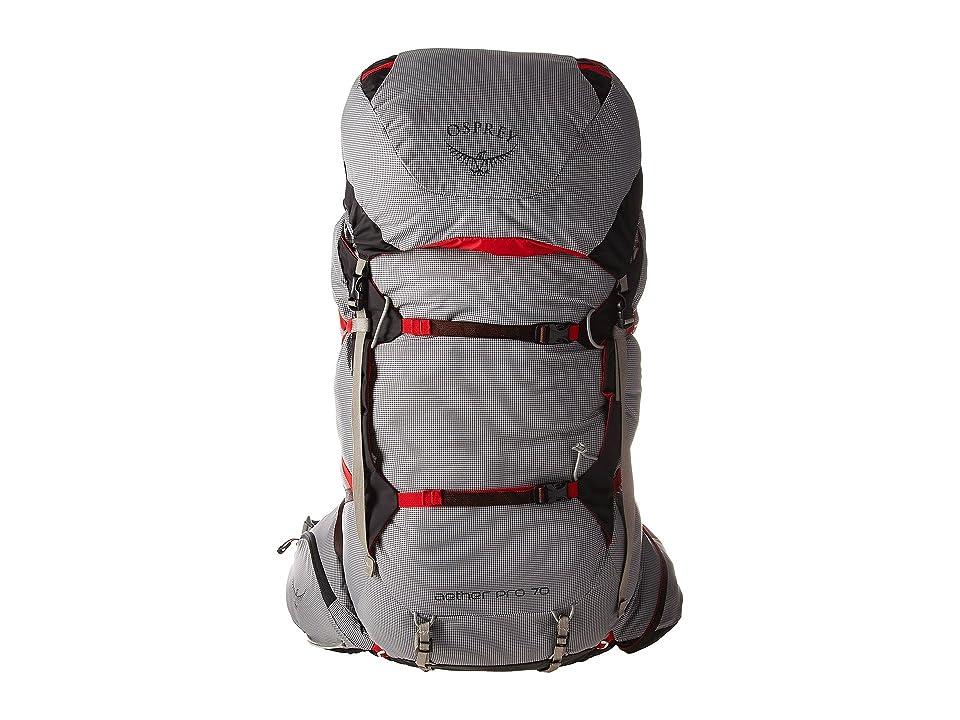 f001c3b946 Osprey Aether Pro 70 (Kepler Grey) Backpack Bags
