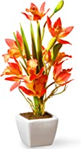 National Tree 13 Inch Yellow and Orange Orchid Flowers with White Square Ceramic Base (NF36-5240P-1)