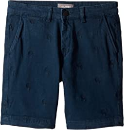 Jacob Chino Shorts in Harpy (Big Kids)