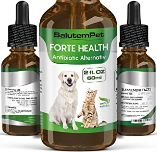 Natural ANTIBIOTICS for Dogs / ANTIBIOTICS Alternative for Pets/ Kennel Cough Medicine for Dogs / UTI Treatment / ANTIBIOTICS for Cats