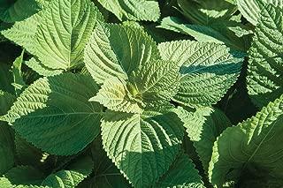 Best ao organic plant grow Reviews