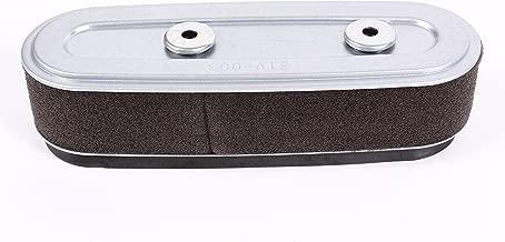 Honda 17210-Z1V-003 Air Filter
