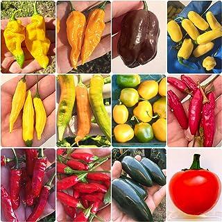 120 Samen der 12 leckersten Chilis der Welt - Sammlung Gourmet: Lemon Reaper, Habanero, Aji, etc